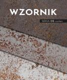 Wzornik płyt betonowych z serii DS corten (rdza)