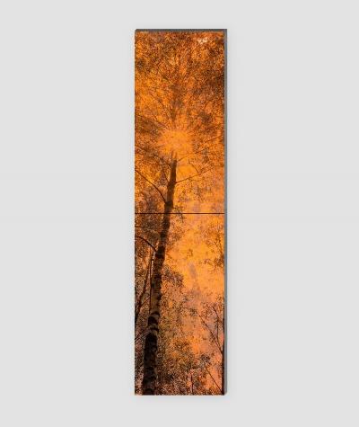 GF - (zardzewiały las) - 2 piankowe panele akustyczne