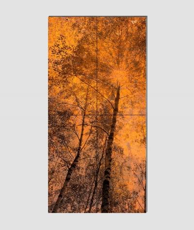 GF - (zardzewiały las) - 4 piankowe panele akustyczne
