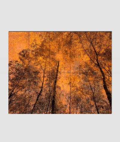 GF - (zardzewiały las) - 10 piankowych paneli akustycznych