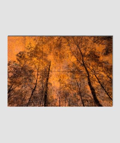 GF - (zardzewiały las) - 12 piankowych paneli akustycznych