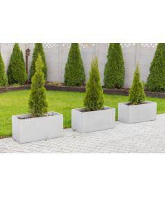 Concrete flower pot (white)