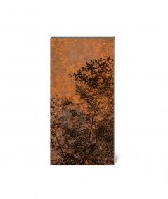 GF - (rusty forest) - 10 foam acoustic panels