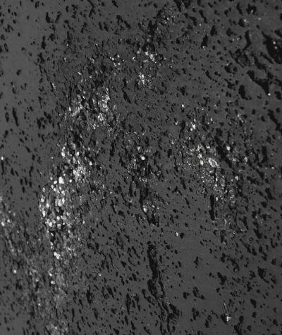 DS (antracyt srebrne kruszywo) - płyta beton architektoniczny GRC ultralekka