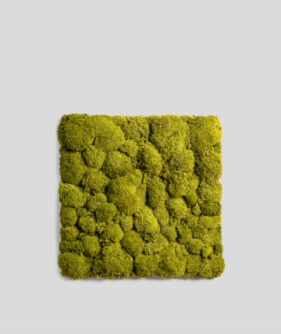 Pillow forest moss (energetic green P03)