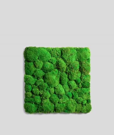 Pillow forest moss (grass green P02)
