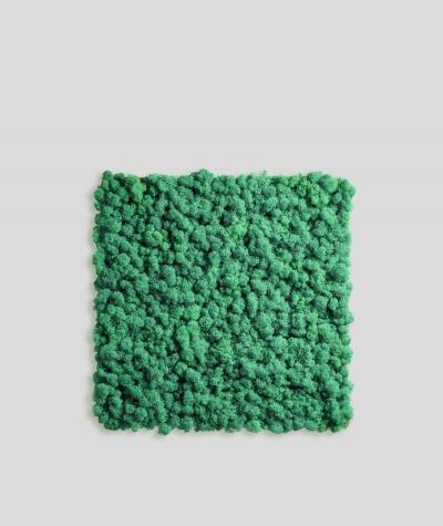 Chrobotek, mech reniferowy islandzki (010 turkusowa zieleń) - basic