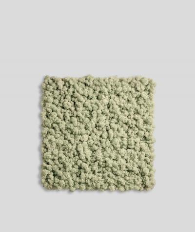 Chrobotek, mech reniferowy islandzki (000 naturalny) - basic