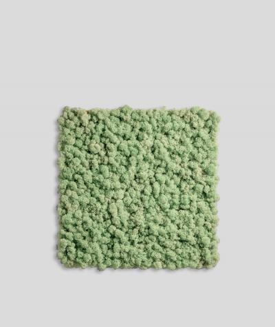 Chrobotek FLEXY, mech reniferowy islandzki (006 miętowa zieleń)