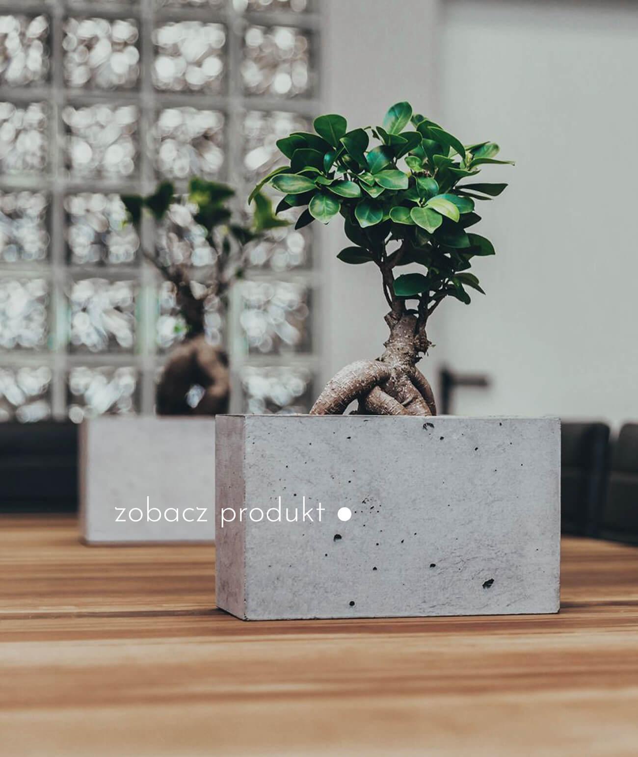 doniczki-donice-betonowe_989-21286-donica-betonowa-szara-donica-ogrodowa-beton-architektoniczny